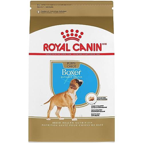 Dog Boxer: Amazon com