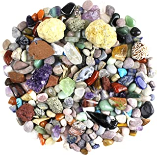 Dancing Bear Rock & Mineral Collection Activity Kit (200 Piece Set) with Geodes, Real Shark Teeth Fossils, Arrowheads, Crystals, Gemstones, Treasure Hunt ID Sheet, STEM Science Education, Made in USA