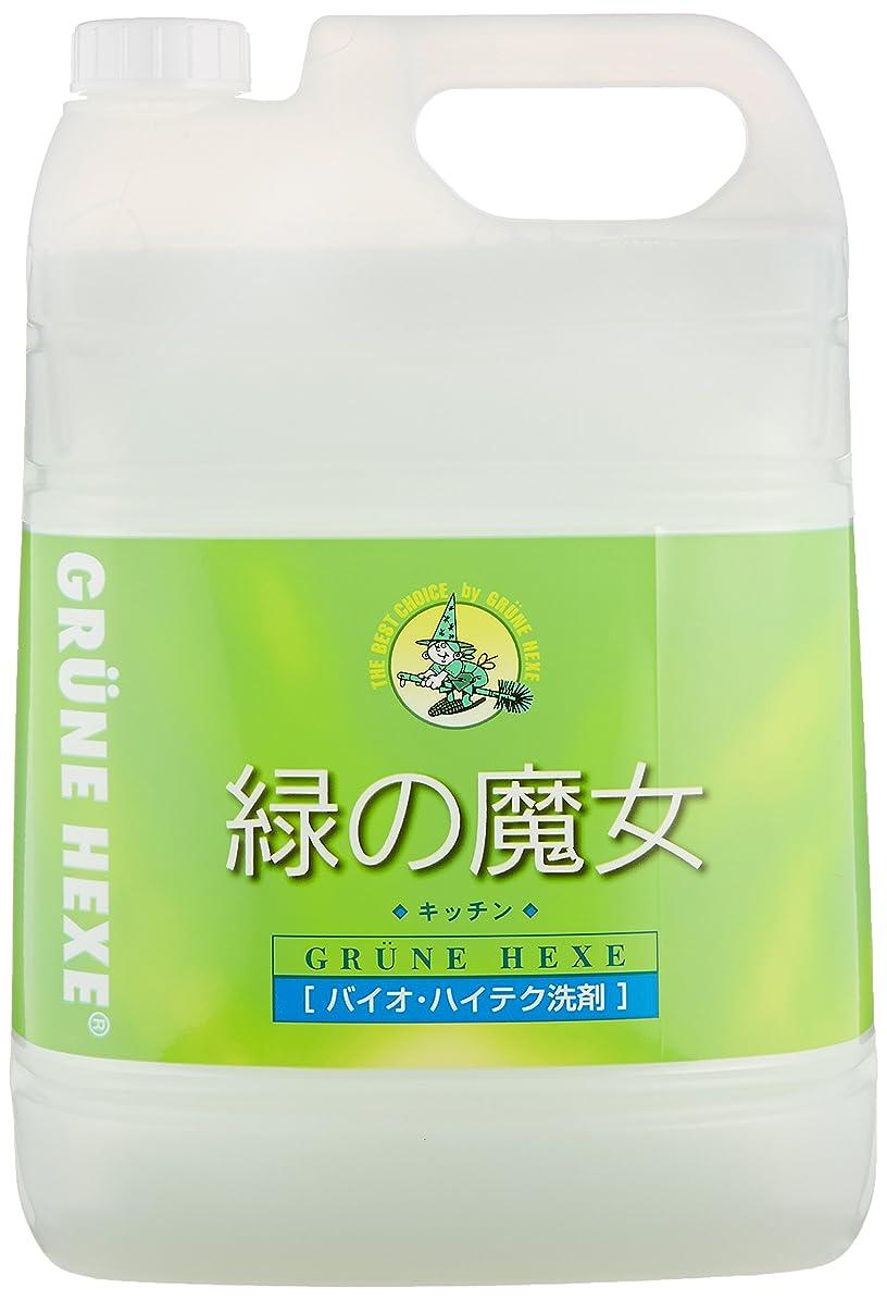 子孫バッフル拷問【大容量】 緑の魔女 キッチン(食器用洗剤) 5L