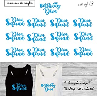 Set of 13,1- Birthday Diva, 12 - Diva Squad iron on, DIY Birthday Party iron on for T shirt, Tank Top (#SS)