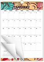 Cabbrix 2020 Monthly Wall Calendar, January 2020 - June 2021, Vertical, Ruled Blocks, 17 x 12 Inches