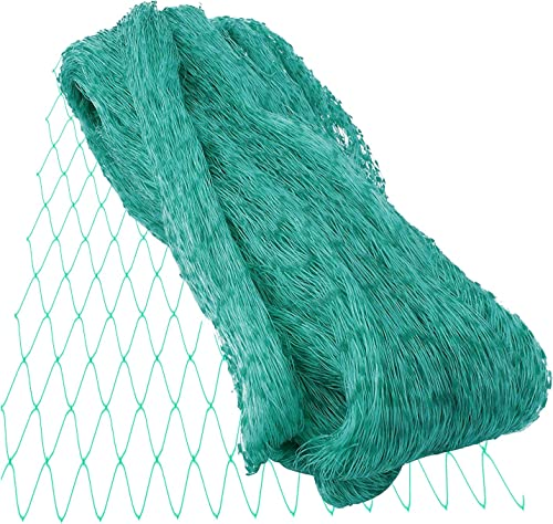 lowest labworkauto Anti Birds Netting Protect Mesh Netting Garden Plants Fencing Mesh Fit discount for Garden Protecting outlet sale Plants Fruit Trees Against Birds and Other Animals (13ft x 33ft) sale