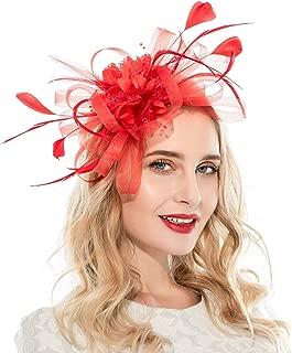 Fascinators Hat for Women Tea Party Headband Fancy Dress Accessories Wedding Cocktail Flower Mesh Feathers Hair Clip