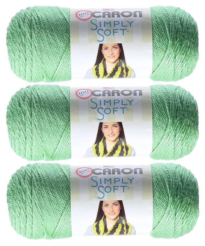 Bulk Buy: Caron Simply Soft Yarn Solids (3-Pack) Sage H97003-9705