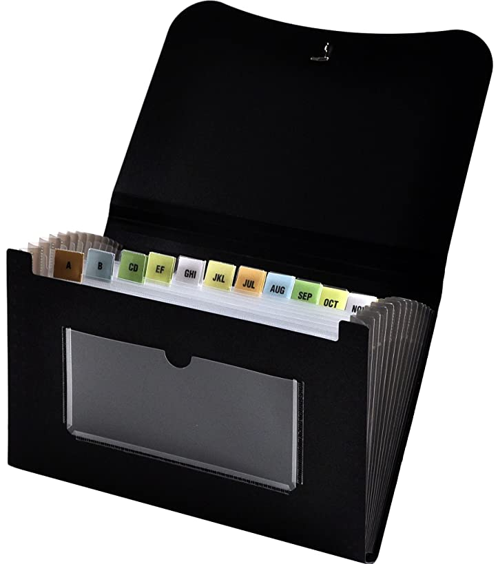 Lion 13-Pocket Mini Expanding File, Black, 1 File (94300-BK)