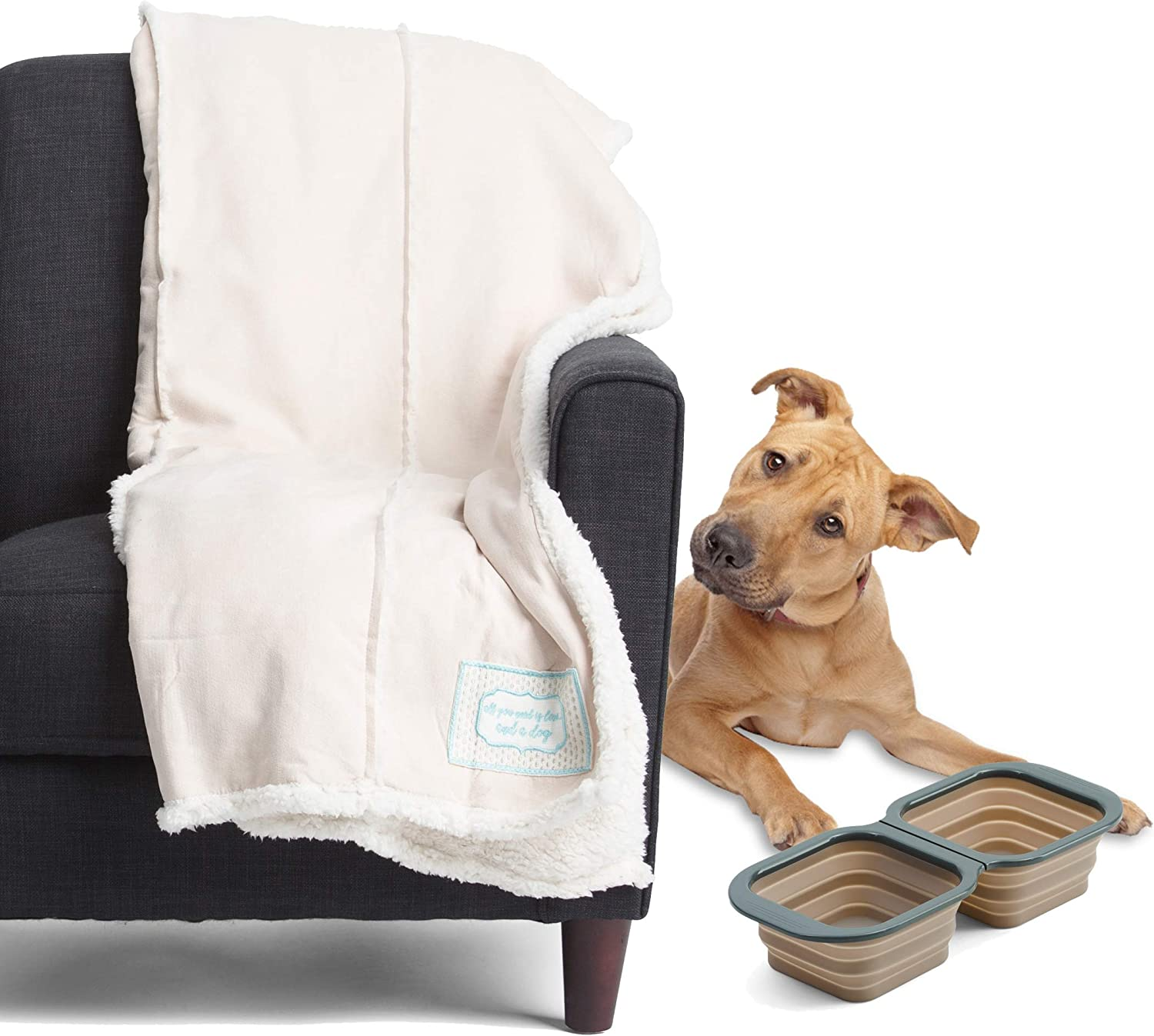 Big & Awesome Large 60 x 50 Dog Pet Throw Reverse to Sherpa Bundle with Collapsible Foldable Smart Pet Feeder