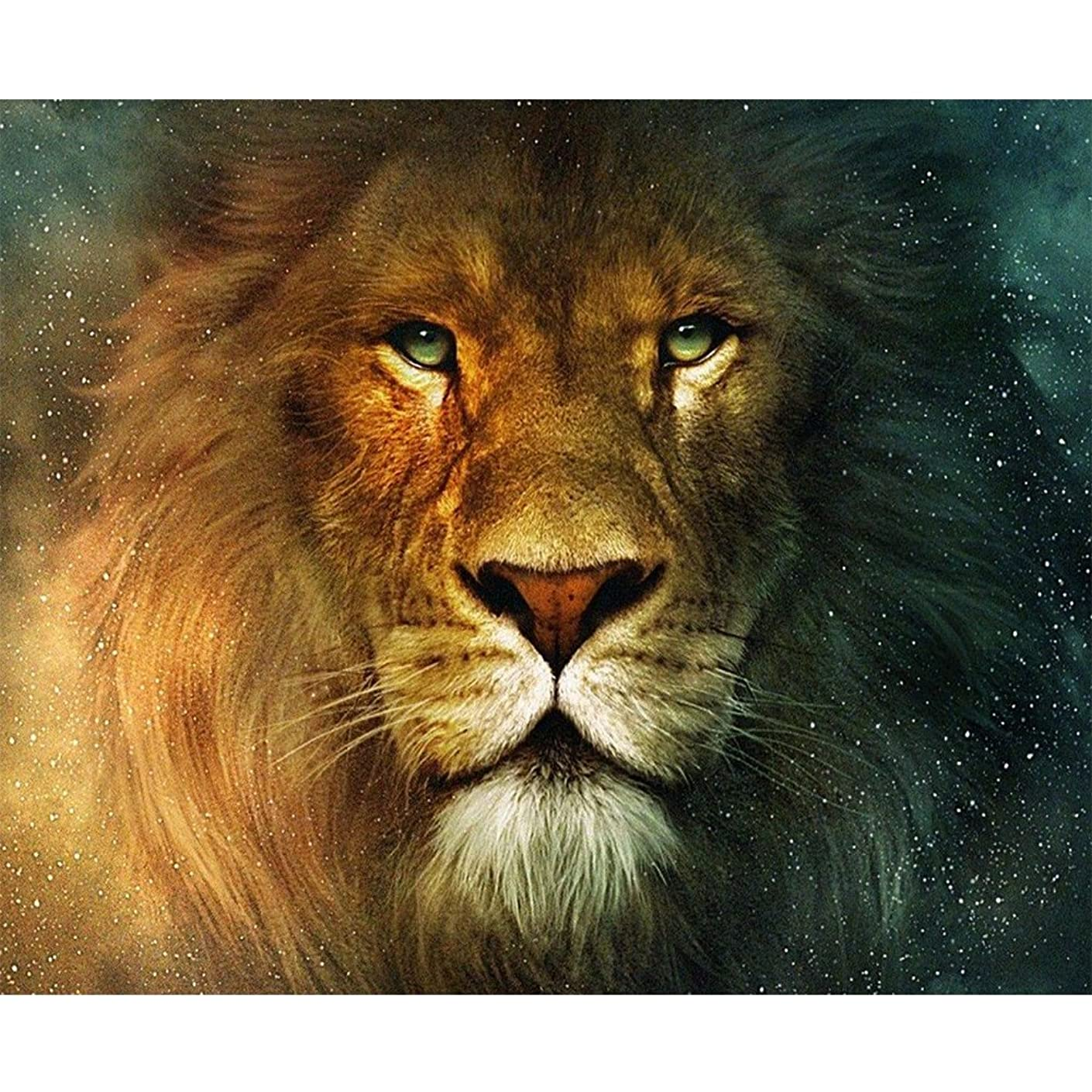 Blxecky 5D DIY Diamond Painting ,By Number Kits Crafts & Sewing Cross Stitch,Wall stickers for living room decoration,lion(16X12inch/40X30CM)