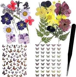 124 pièces naturelles vraies fleurs pressées séchées ensemble de feuilles et autocollants papillon avec pince à épiler pou...