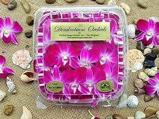 Best purple flower garnish Reviews