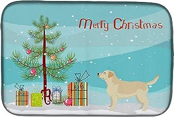 Carolines Treasures Flat Coated Retriever Christmas Night Light 6 x 4 Multicolor