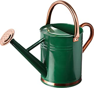 Best watering can diffuser Reviews