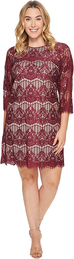 Adrianna Papell - Plus Size Scalloped Lace Trapeze Dress