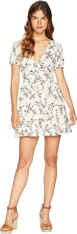 Deep V-Neck Fit & Flare Dress