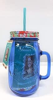Best pioneer woman mason jar cups Reviews