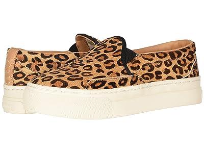 Soludos Bondi Printed Sneaker (Leopard) Women