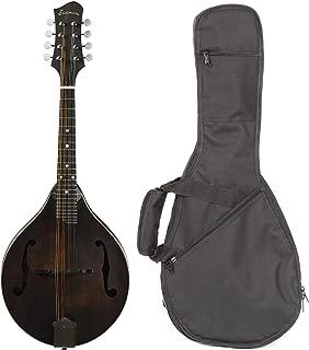 Best eastman 305 mandolin Reviews
