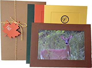 Fall Collection - 4x6 Photo Insert Note Cards - 24 Pack by Plymouth Cards