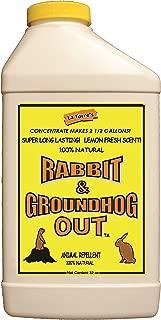 Rabbit & Groundhog Repellent: Rabbit Out 32oz Concentrate