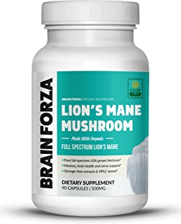 lion's mane mushroom for dogs
