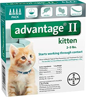 Bayer Animal Health Advantage II Kitten 4-Pack