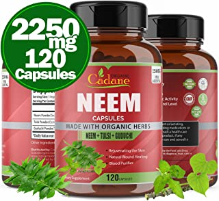 Organic Neem Leaf Powder Capsules 2250mg with Tulsi, Guduchi Extract | Blood Purifier and Detoxification Herbs | Healthy H...