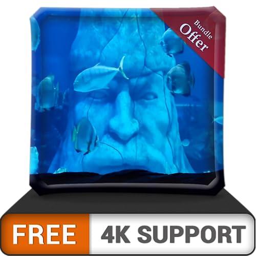 Kostenloses Unterwasserstatuen-Aquarium HD - Tauchen Sie im Meer, um das wunderschöne Aquarium auf Ihrem HDR 4K-Fernseher, 8K-Fernseher und Feuergeräten als Hintergrundbild, Dekoration für die Weihnac