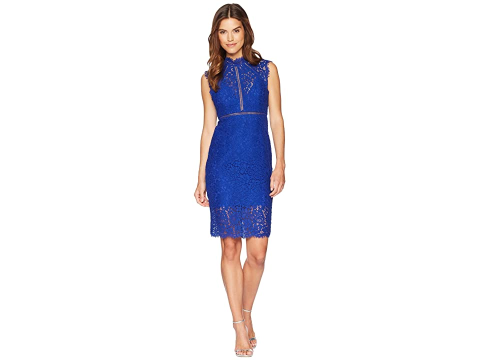 Bardot Lace Panel Dress (Cobalt) Women