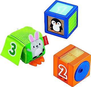 Fisher-Price GJW13 Stack & Discover Sensory Blocks