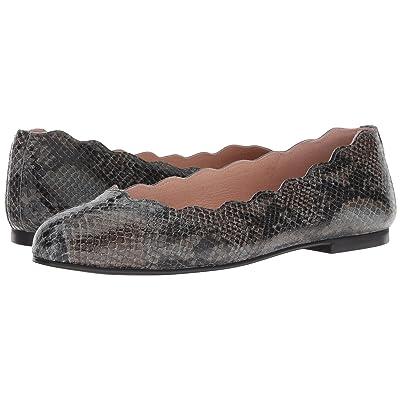 French Sole Jigsaw (Carbon Grey Snake) Women