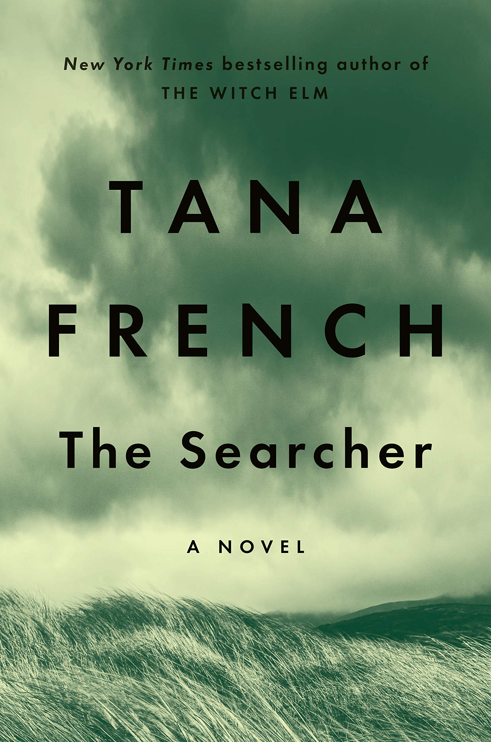 Cover image of The Searcher by Tana French
