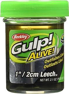 Berkley Gulp! Alive! Leech Black, 1-Inch