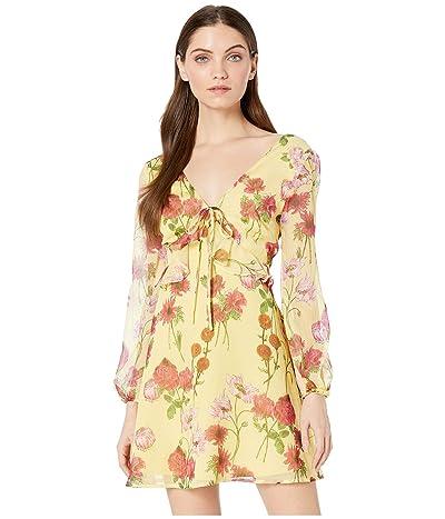 BB Dakota Botanical Bae Dress (Yellow Iris) Women