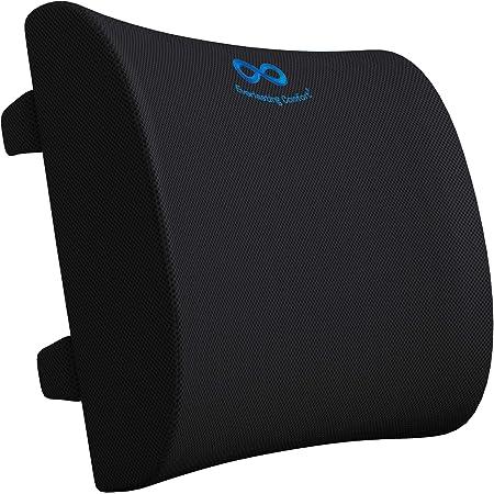 Everlasting Comfort Lumbar Support Pillow for Office Chair - Pure Memory Foam Lumbar Cushion for Car (Black)