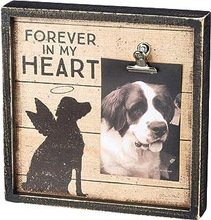 إطار صورة صندوق تذكاري للحيوانات الأليفة من موتينفالي، فوريفر إن ماي هارت