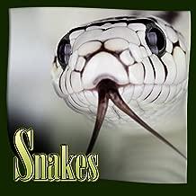 Children Books : SNAKES (Animal Life Book) snakes books for children (Bedtime Story) Ages 6 - 12 (Animal Habitats and Books for Early/Beginner Readers Book 7)