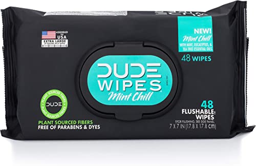Dude Products Wipes Flushable Wet Wipes Dispenser, Mint Chill, 48Count - Scented Wet Wipes with Vitamin-E, Aloe, Euca...