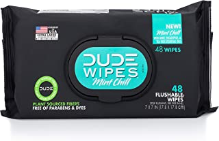 Dude Products Wipes Flushable Wet Wipes Dispenser, Mint Chill, 48Count - Scented Wet Wipes with Vitamin-E, Aloe, Eucalyptu...