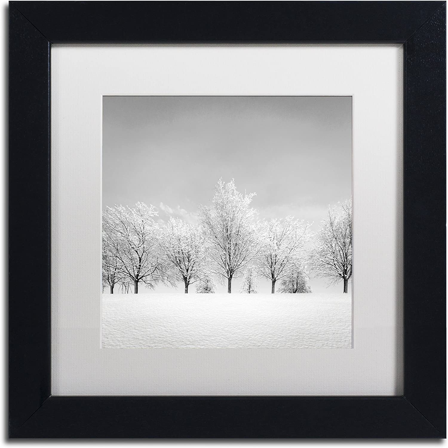 Trademark Fine Art Ice Storm by Dave MacVicar Frame, 11 by 11Inch, White Matte