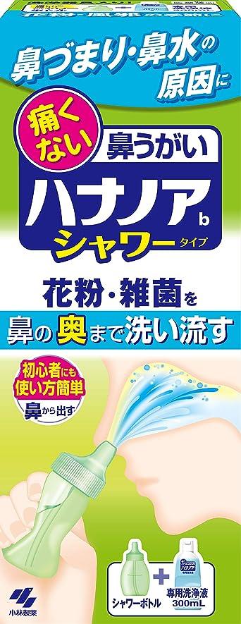 膿瘍バーゲンノイズハナノアシャワー 痛くない鼻うがい 使い方簡単タイプ (鼻洗浄器具+専用洗浄液300ml)