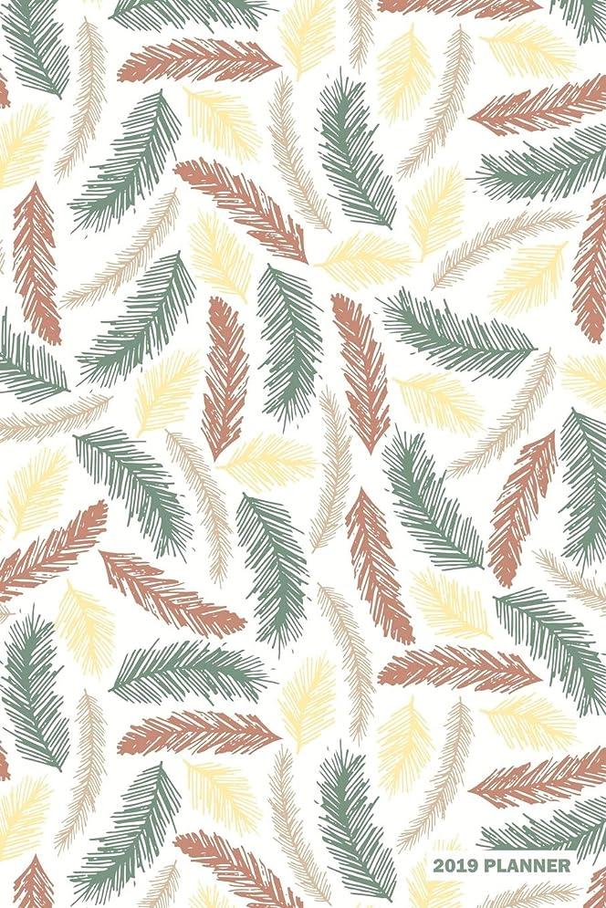酔ったいたずらな満足させる2019 Planner: Daily Weekly & Monthly Organizer Colorful Feathers Pattern Cover
