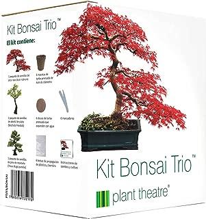 Amazon.es: regalos originales - Plantas, semillas y bulbos: Jardín