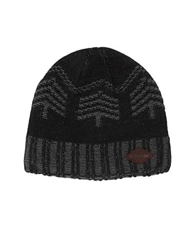 Dakine Spruce Beanie (Black) Beanies