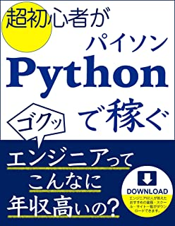 How Super Beginners Make Money With Python: Do engineers have a high income (Japanese Edition)