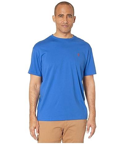 Polo Ralph Lauren Classic Fit Crew Neck Tee (Blue 3) Men