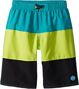 Speedo Kids Blocked Volley Shorts (Little Kids/Big Kids)