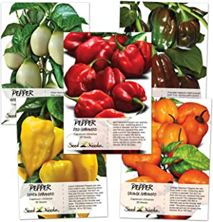 Seed Needs, Habanero Seed Collection (5 Individual Packets) Non-GMO