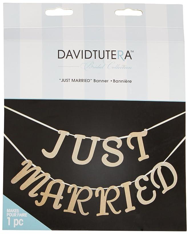 Darice David Tutera Just Married Banner, Gold Glitter