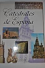 CATEDRALES DE ESPAÑA (SANTIAGO, ORENSE, LEON,…): Amazon.es: VV. AA.: Libros