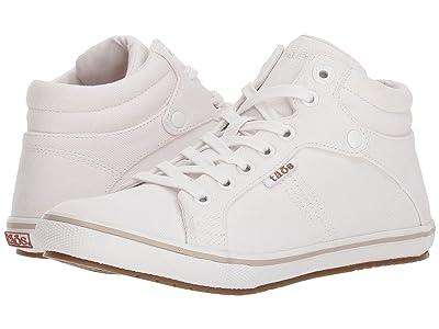 Taos Footwear Top Star (White Canvas) Women