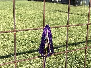 Show Pig Whip - Purple - Purple & Gold